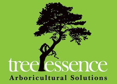 Tree Essence