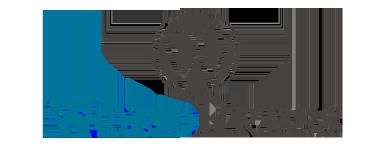 Wordpress Web Developer Gold Coast