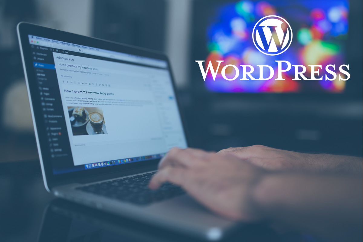 Wordpress Web Developer Gold Coast